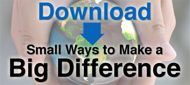 Download Small Ways to Make a Big Difference
