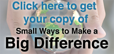Get your copy of  Small Ways to Make a Big Difference